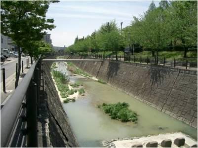 名古屋市:天白川水系の河川(暮...